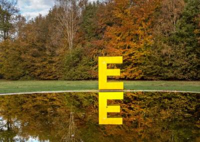Mysterie van de grote gele E